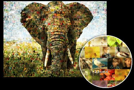 fme landing detail mosaic