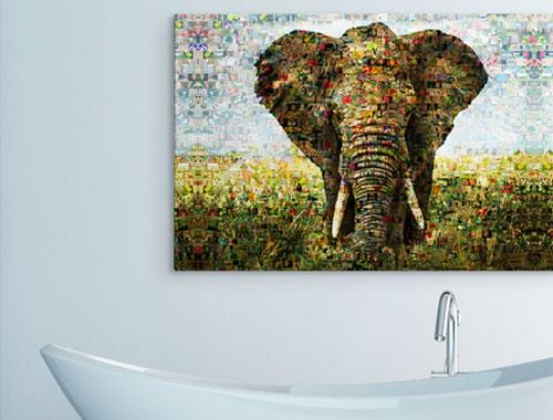 photo mosaique sur Alu-Dibond - Elephant par-dessus la baignoire